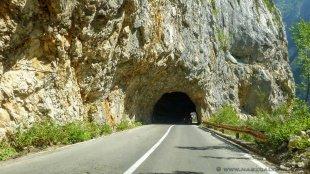 Setki tuneli