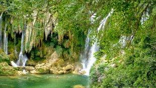 Wodospady ukryte w lesie