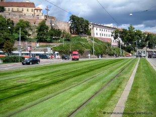 Ekologiczne tory tramwajowe