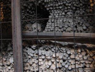 Tysiące kości