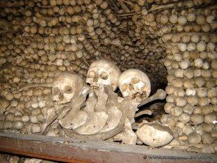Kości i czaszki