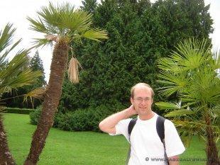 Park z palmami