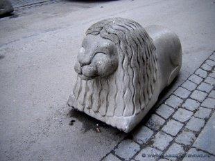 Uliczne lwy